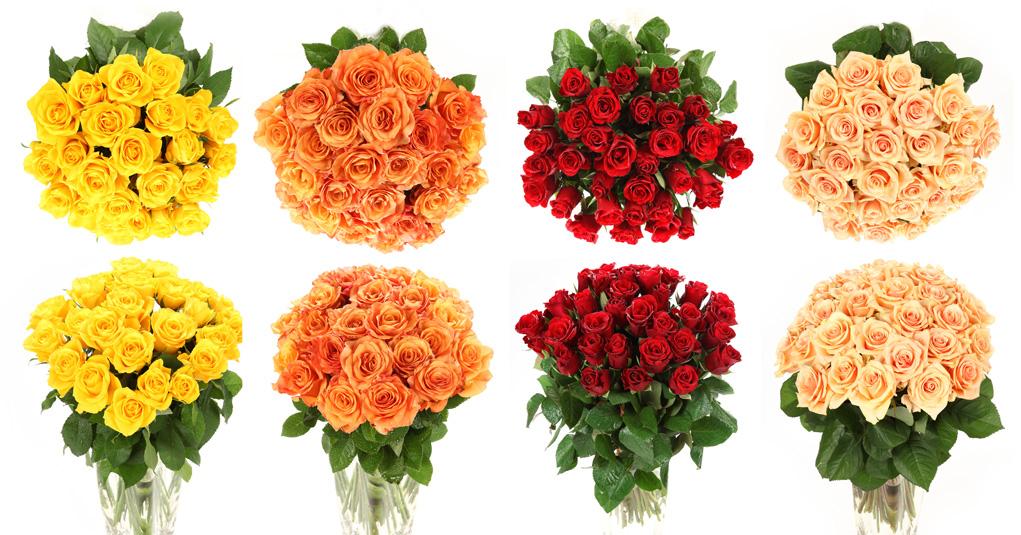 Kwiaty - bukiety róż